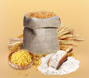 Продам муку пшеничную Казахстанского происхождения